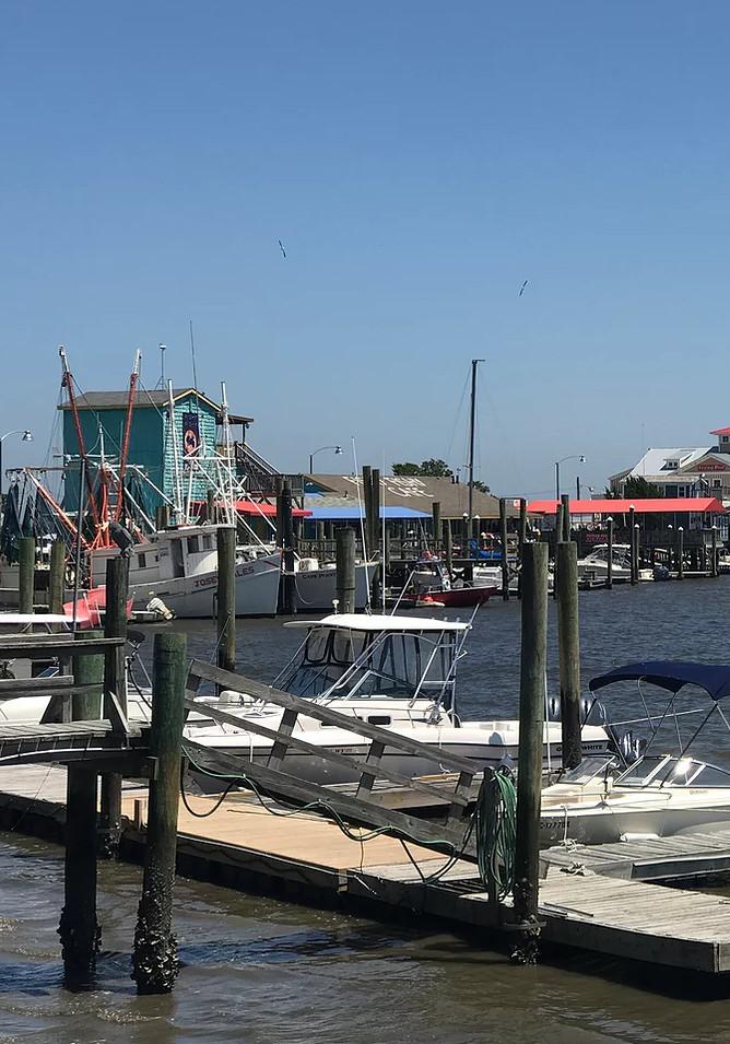 boats-at-dock